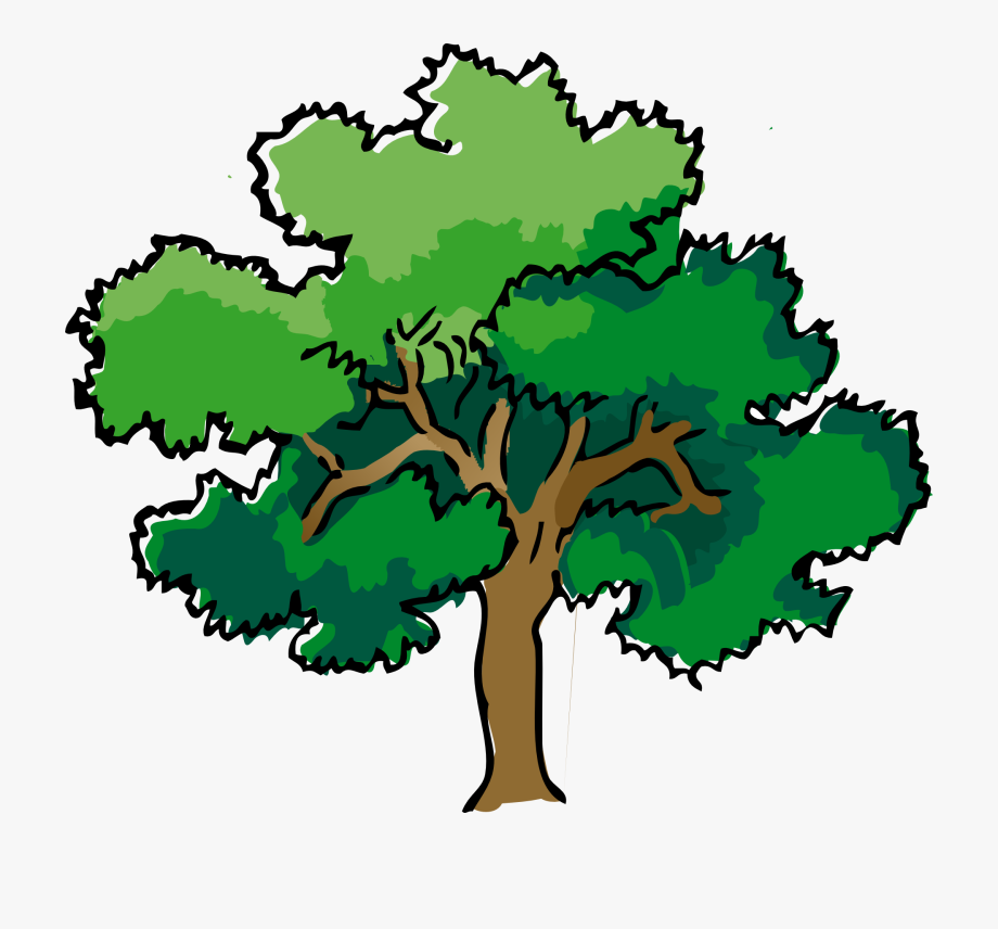 Free cliparts on . Tree clipart narra