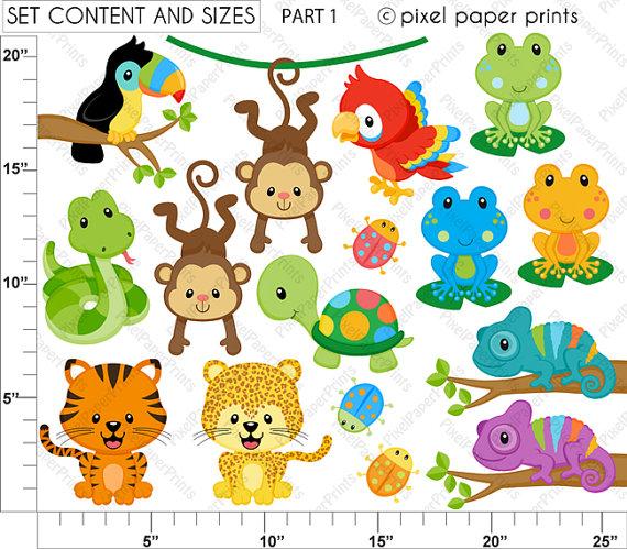 Clip art and digital. Rainforest clipart rainforest creature