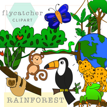. Rainforest clipart rainforest floor