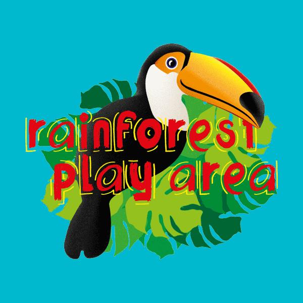 Tamba experience new. Rainforest clipart rainforest toucan