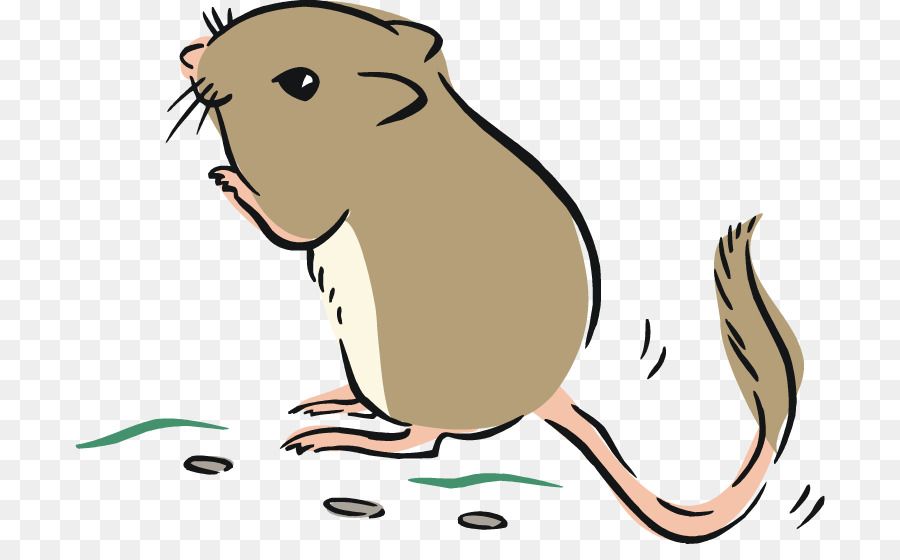 Rat clipart. Gerbil giant kangaroo mouse