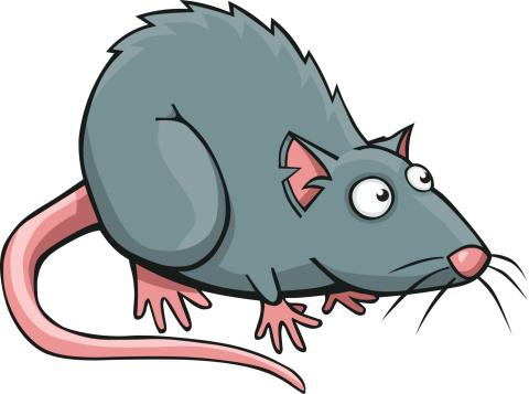 Clip art blogsbeta cliparting. Rat clipart