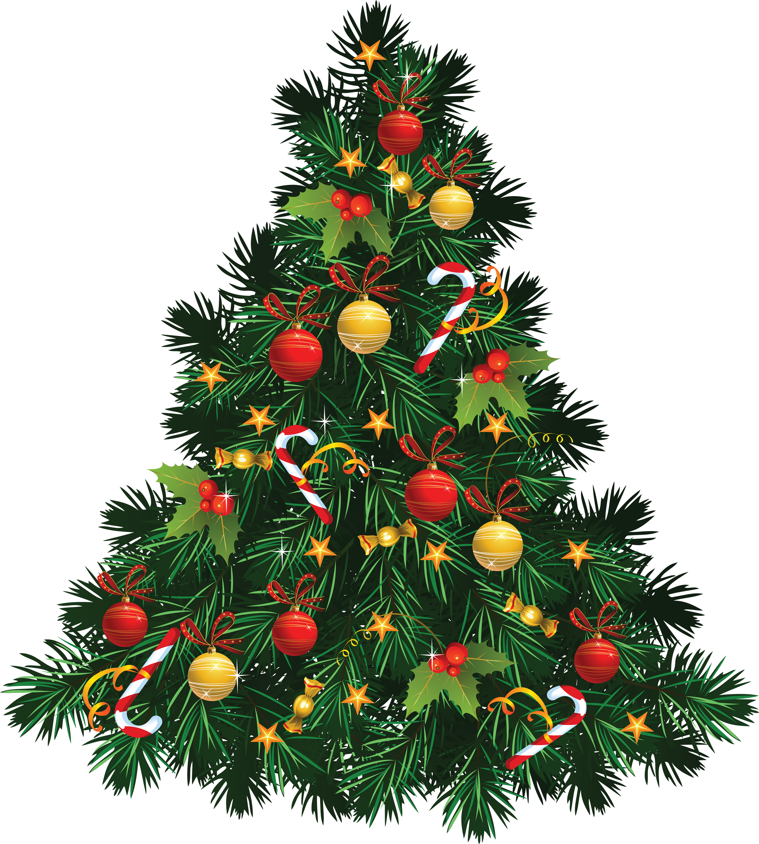 Tree one isolated stock. Png christmas images
