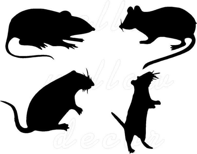 Halloween rats vinyl wall. Rat clipart spooky