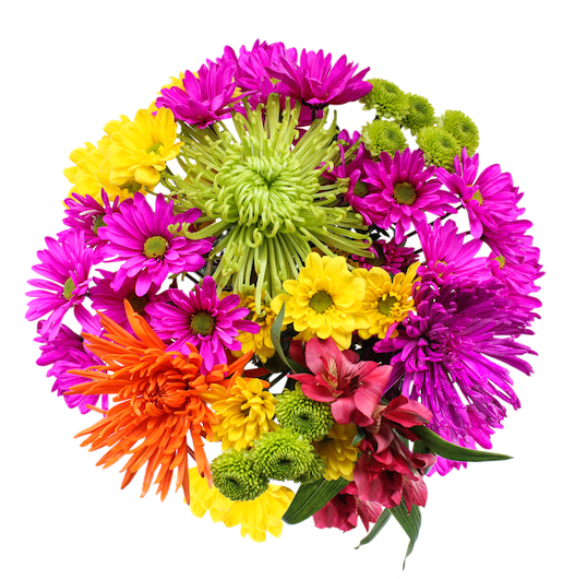 Real flower png. Change it up fresh