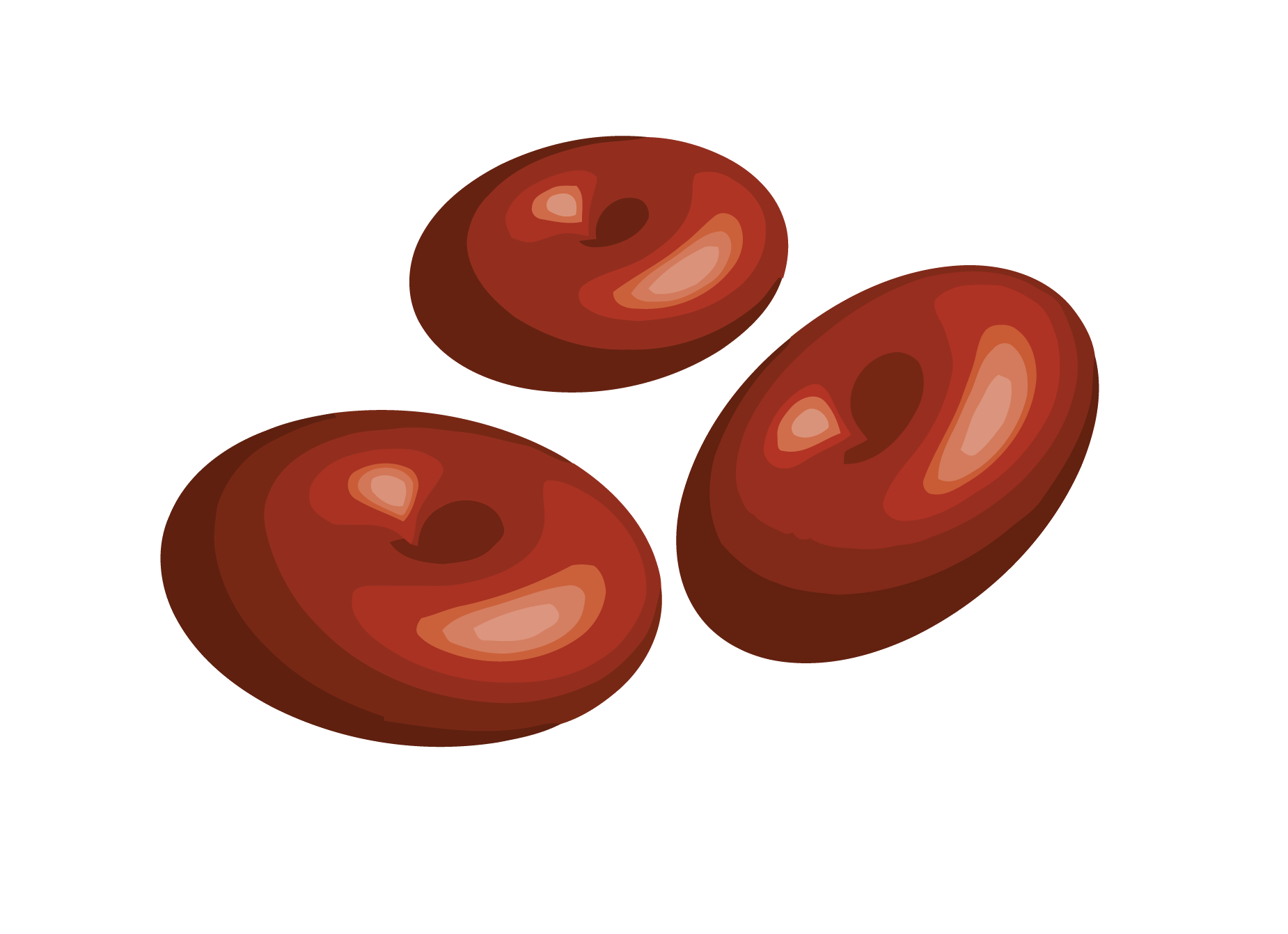 Red blood cells png. Cell type human body