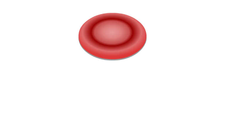 General structure and functions. Red blood cells png