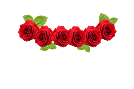 Red flower crown png. Shop near me transparent