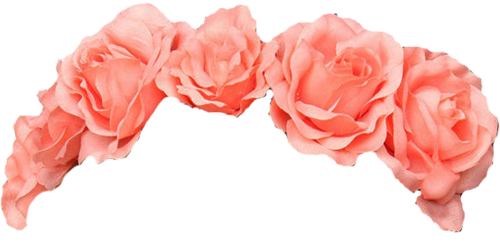 Red flower crown png.  for free download
