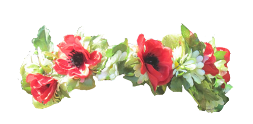 Large transparent most popular. Red flower crown png