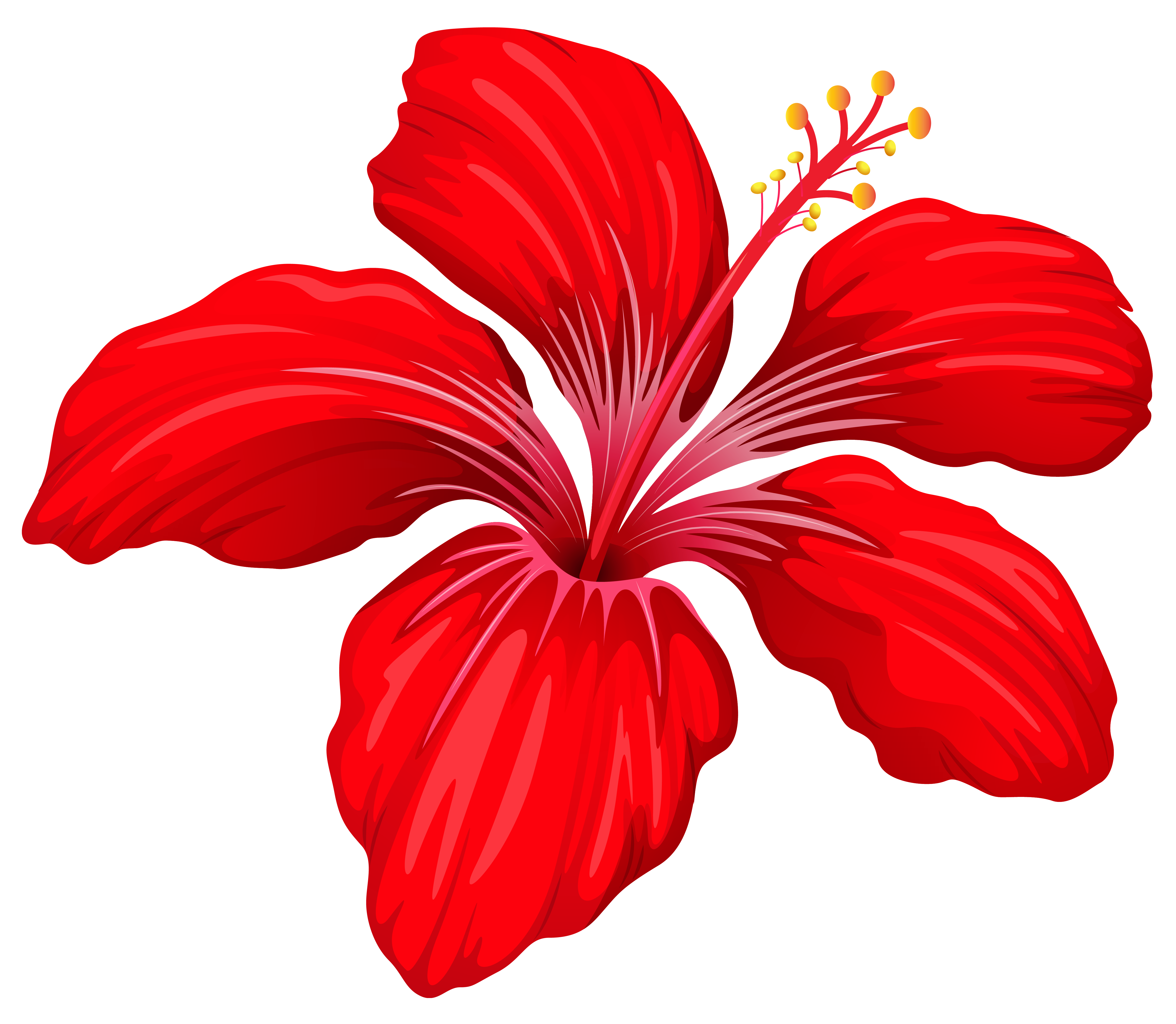 Exotic image gallery yopriceville. Red flower png