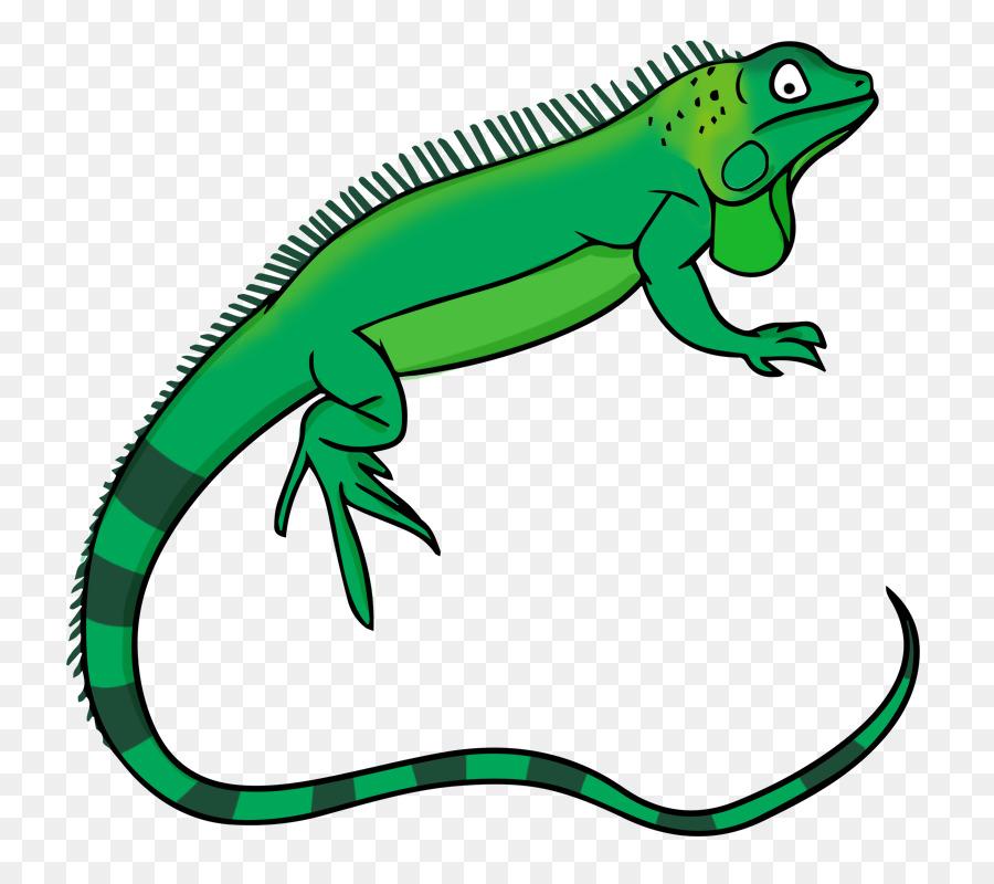 Green lizard free content. Iguana clipart