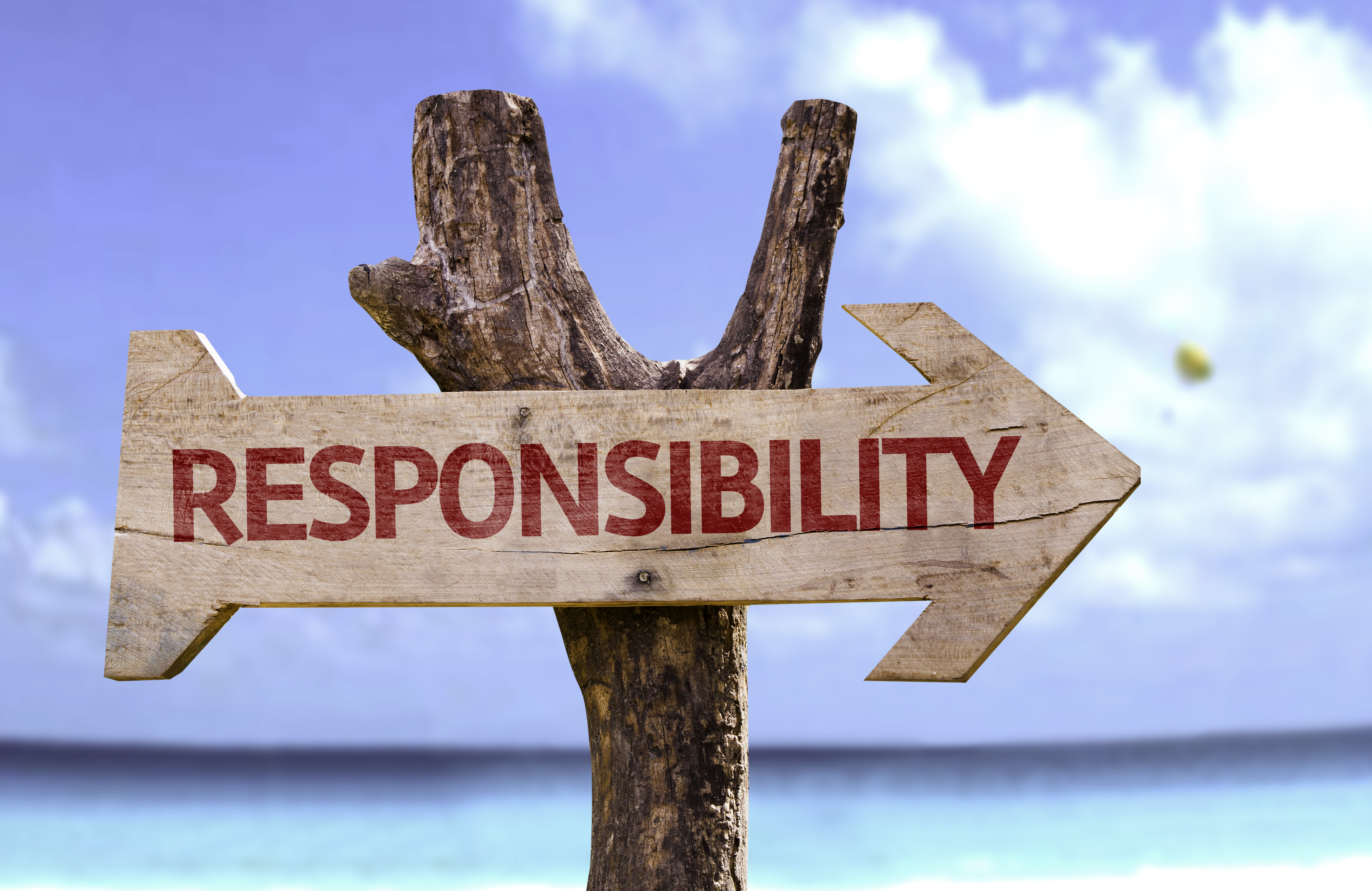 Responsible picture panda free. Responsibility clipart