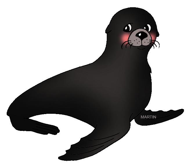 walrus clipart sea lion