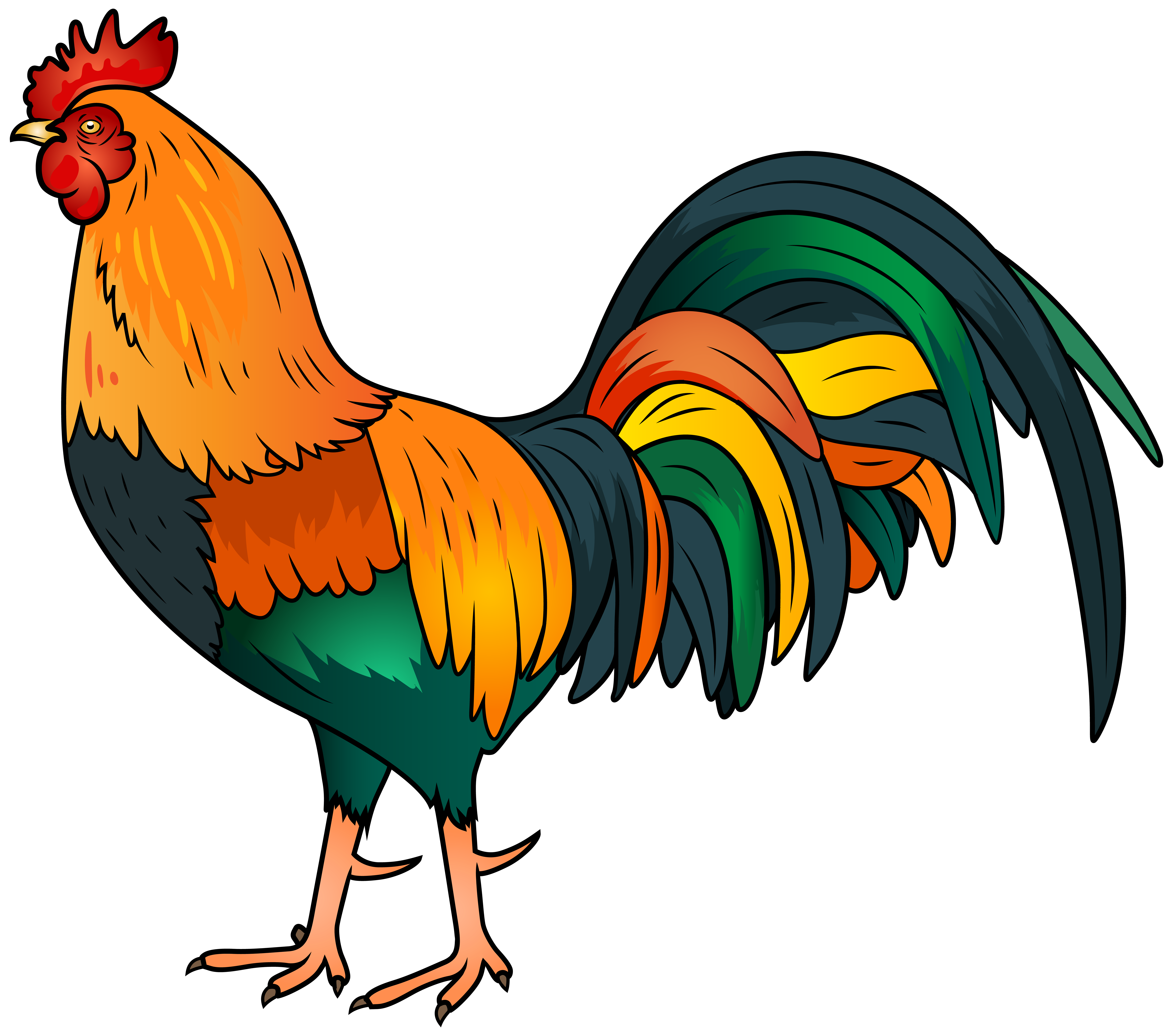 Rooster clipart. Png clip art image