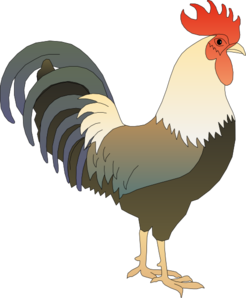 Clip art at clker. Rooster clipart