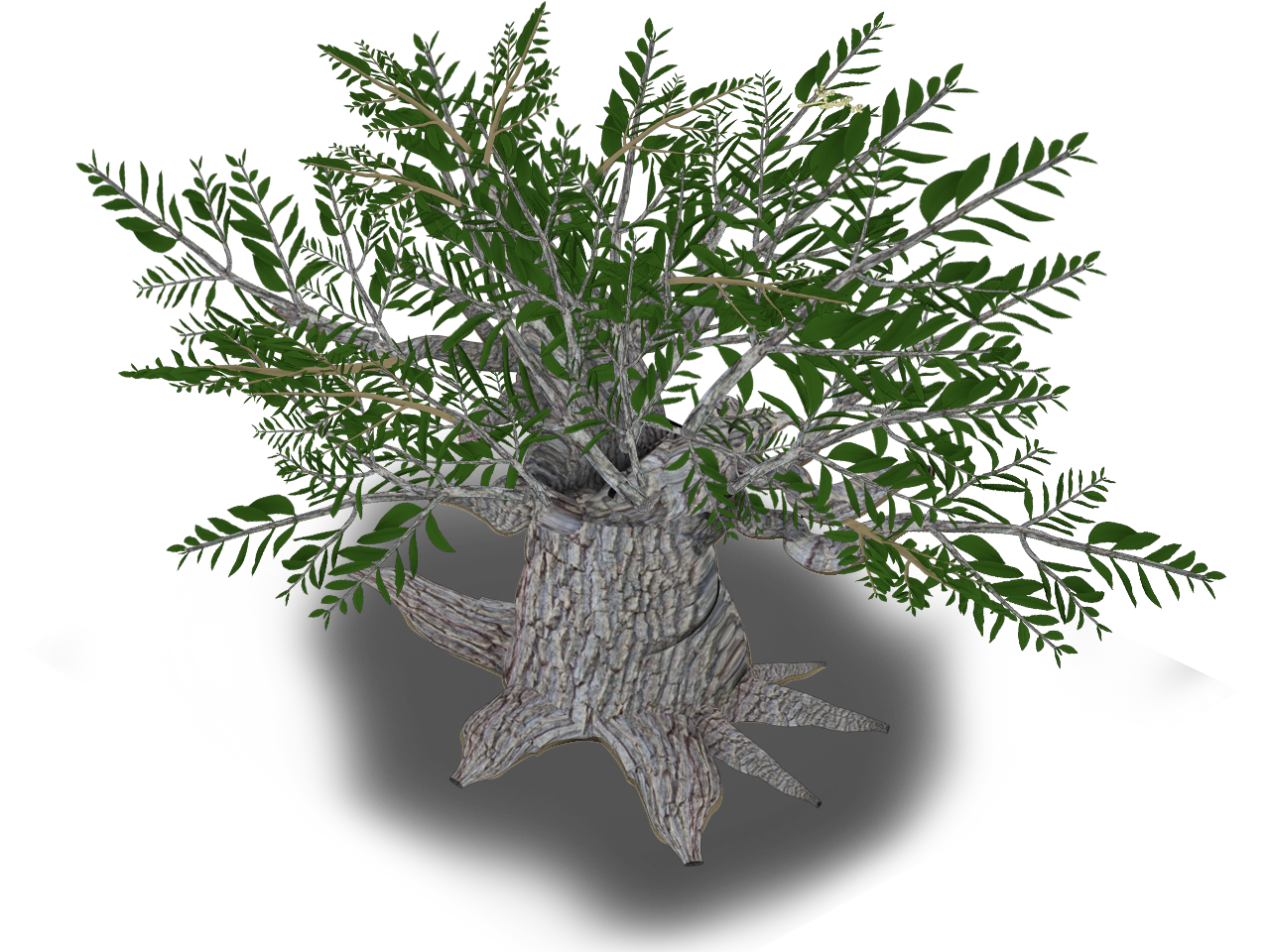 Roots clipart kapok tree. Visceral intricacy iv olive