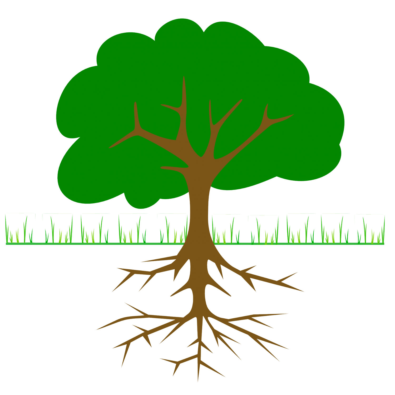 El gran rbol clip. Roots clipart kapok tree