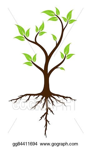 Vector stock green tree. Roots clipart root system
