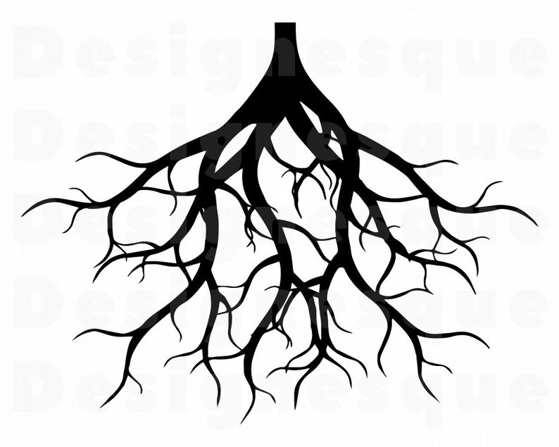 Roots clipart svg, Roots svg Transparent FREE for download ...