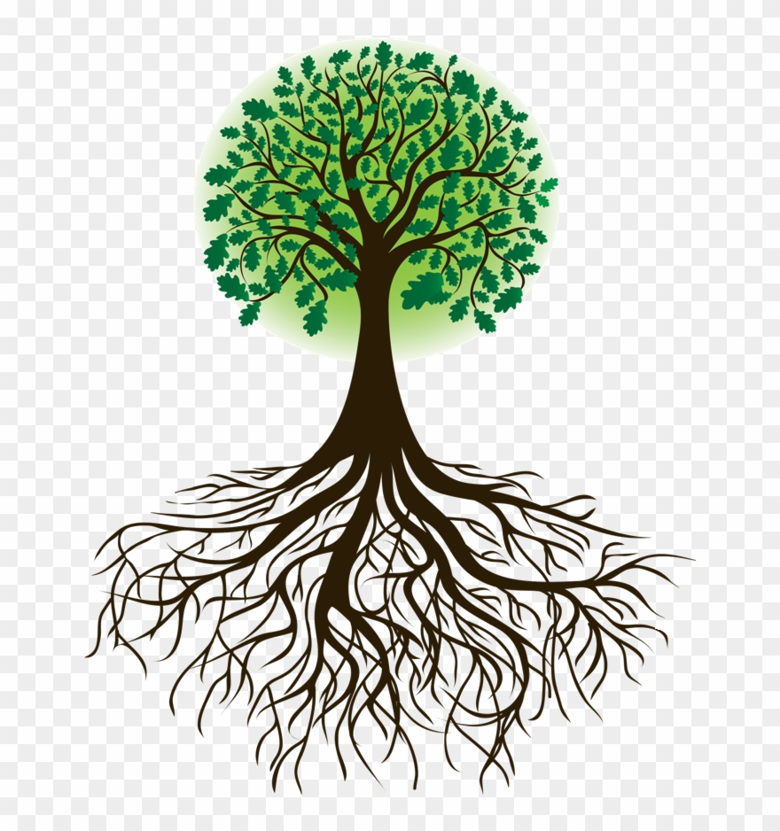 Cartoon with silhouette png. Roots clipart transparent tree leave