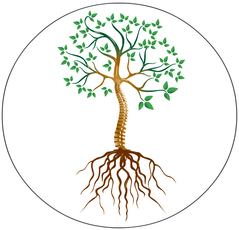 Dick skelton the root. Roots clipart transparent tree leave
