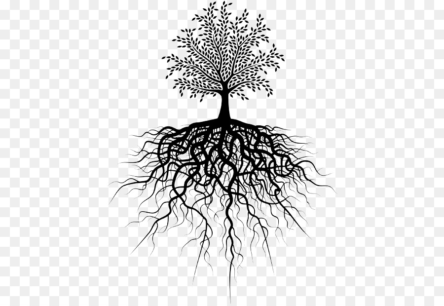 Free with download clip. Roots clipart transparent tree leave