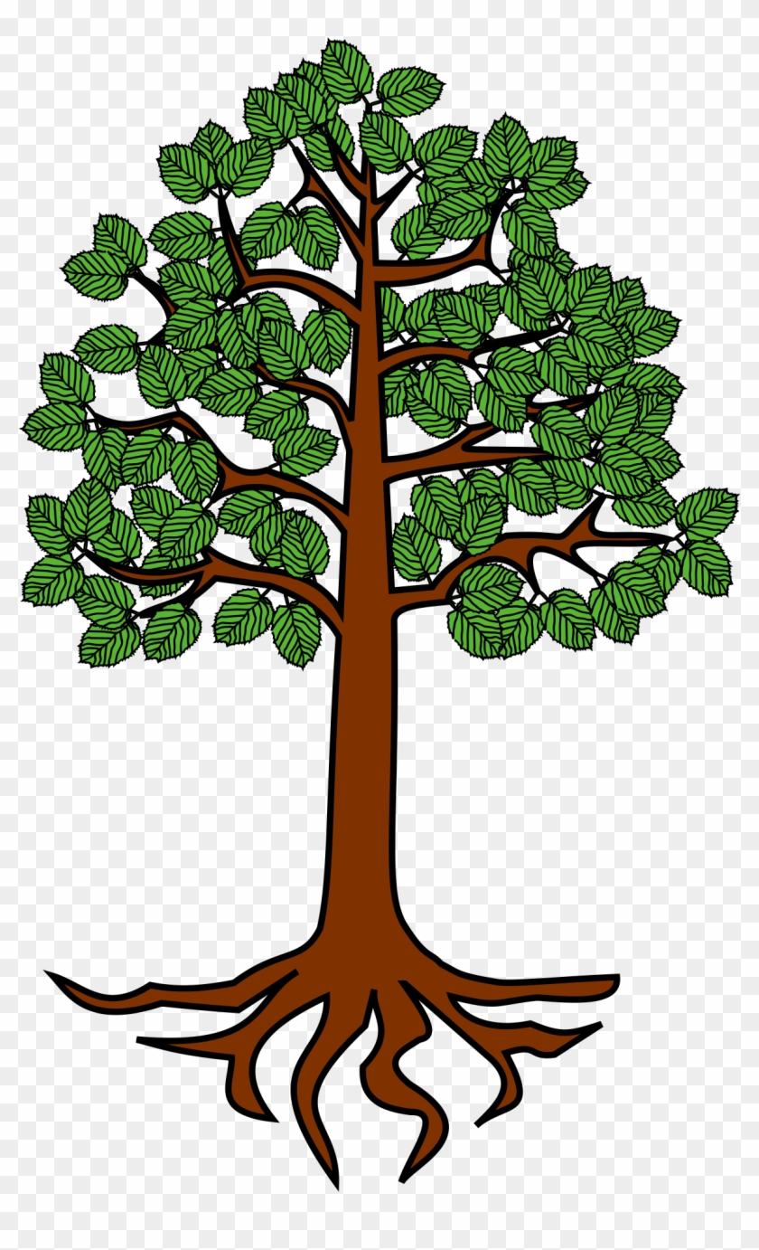 Roots Clipart Tree Diagram Picture 3131019 Roots Clipart Tree Diagram Download this trees green green tree cartoon, cartoon tree, cartoon green, pine transparent png or vector file for free. 3131019 roots clipart tree diagram