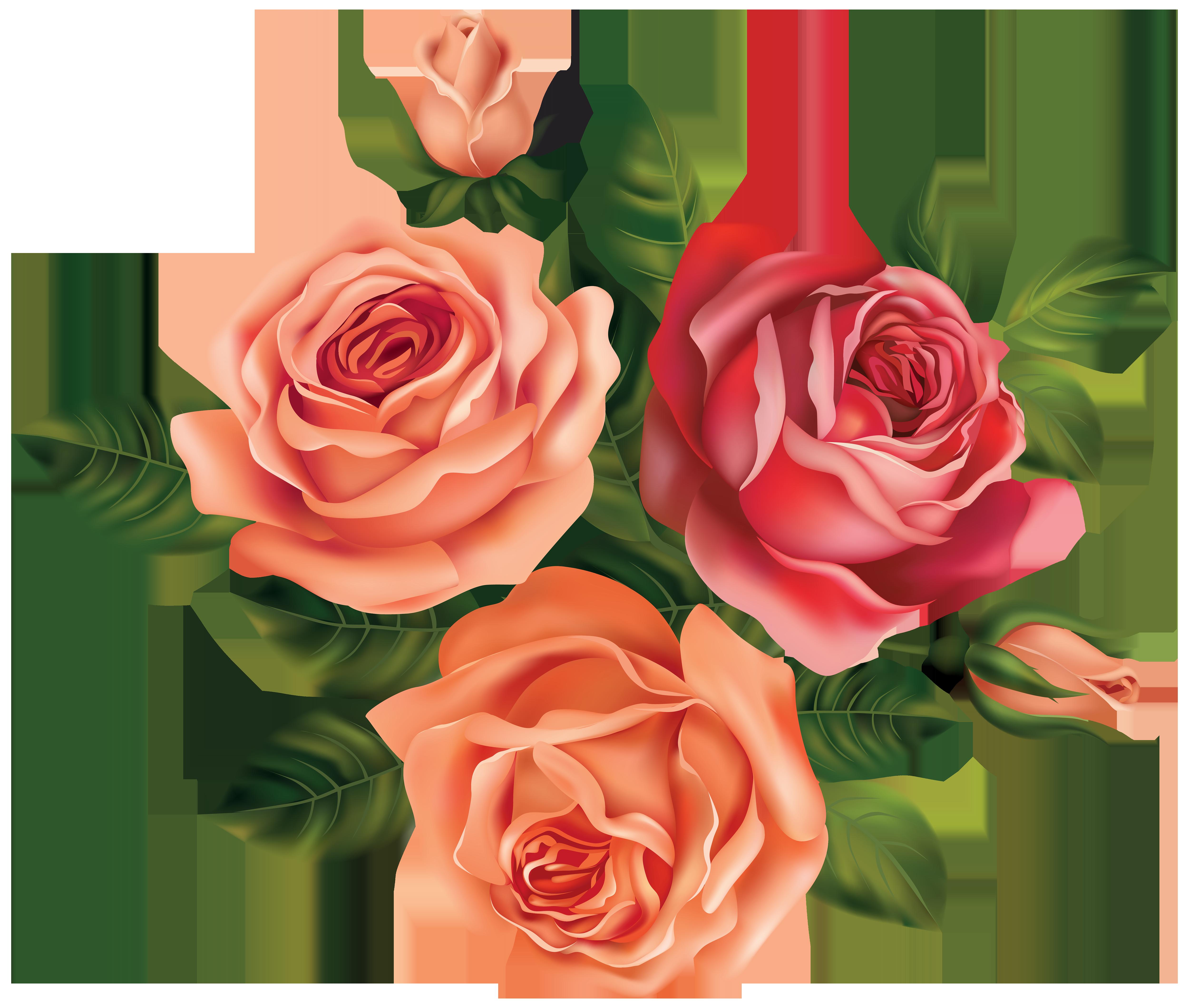 Flower clip art beautiful. Rose clipart chocolate