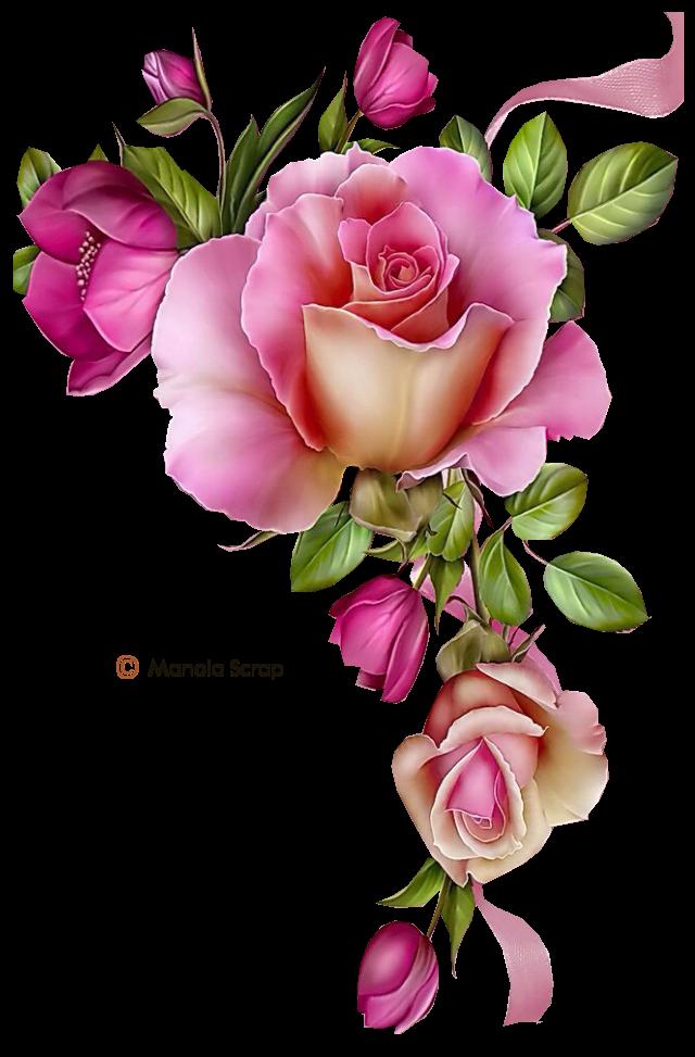 Xr dla pepxw j. Vector flower png
