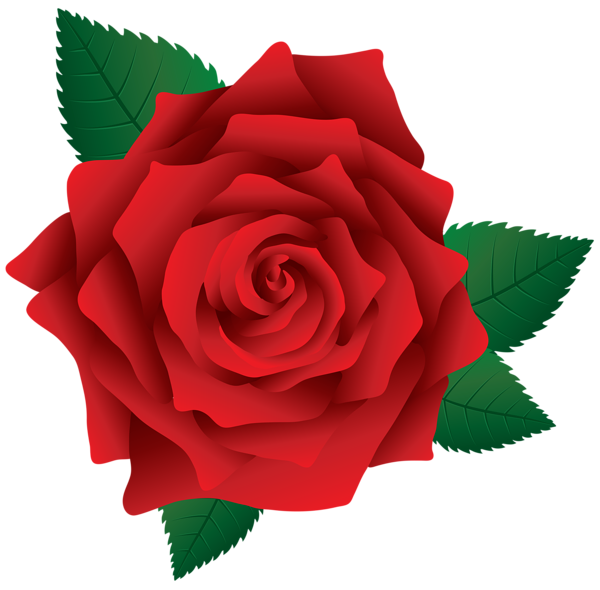 Gallery recent updates . Rose clipart maroon