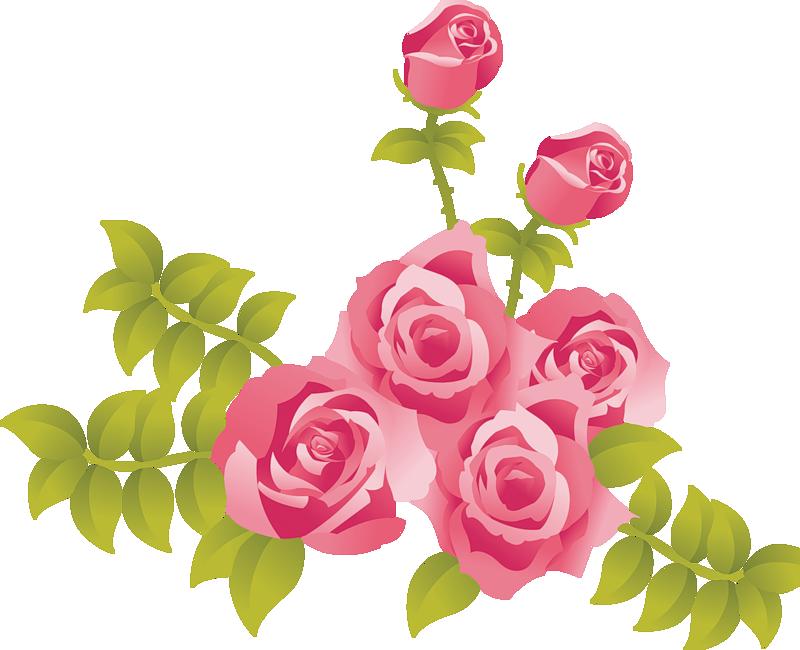 Rose Pink Clip art