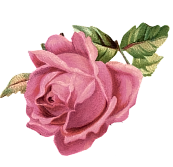 Rose clipart shabby chic. Paper crafts vintage pieces