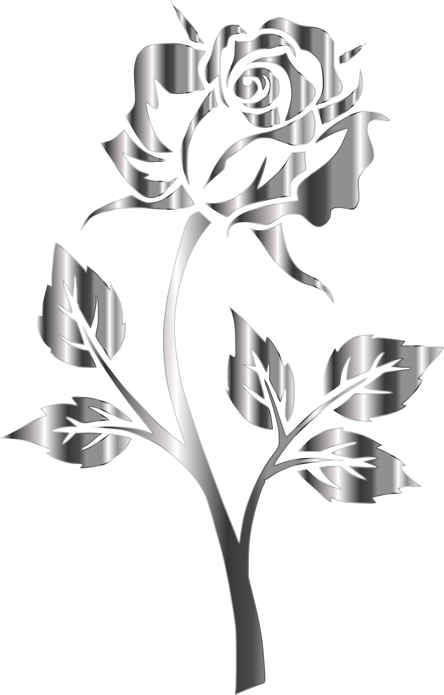 Stainless steel no background. Rose clipart silhouette
