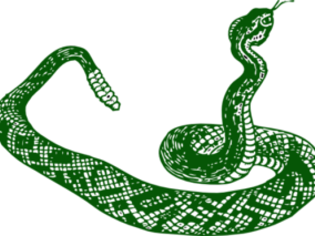 Smooth green free on. Rose clipart snake