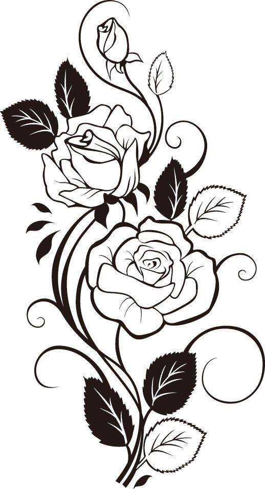 Rose clipart swirl. Thighs or side of
