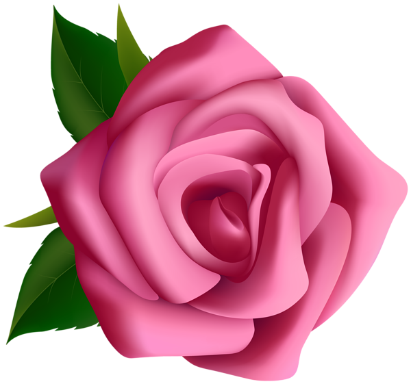 Pink png image my. Rose clipart template