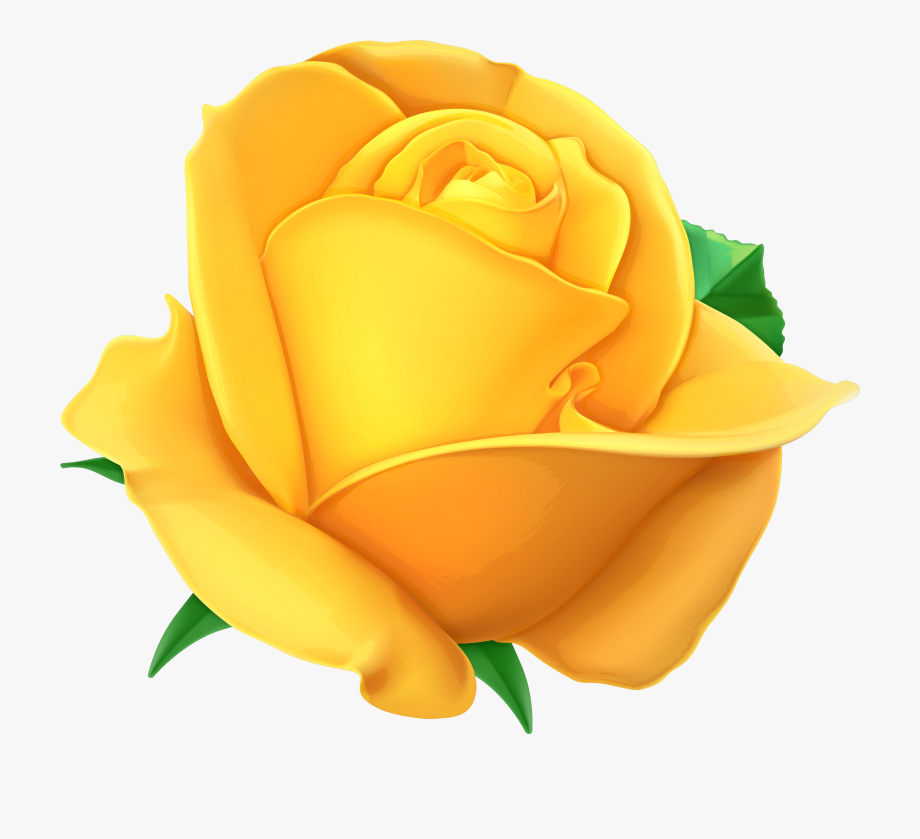 Discover ideas about with. Rose clipart yellow rose