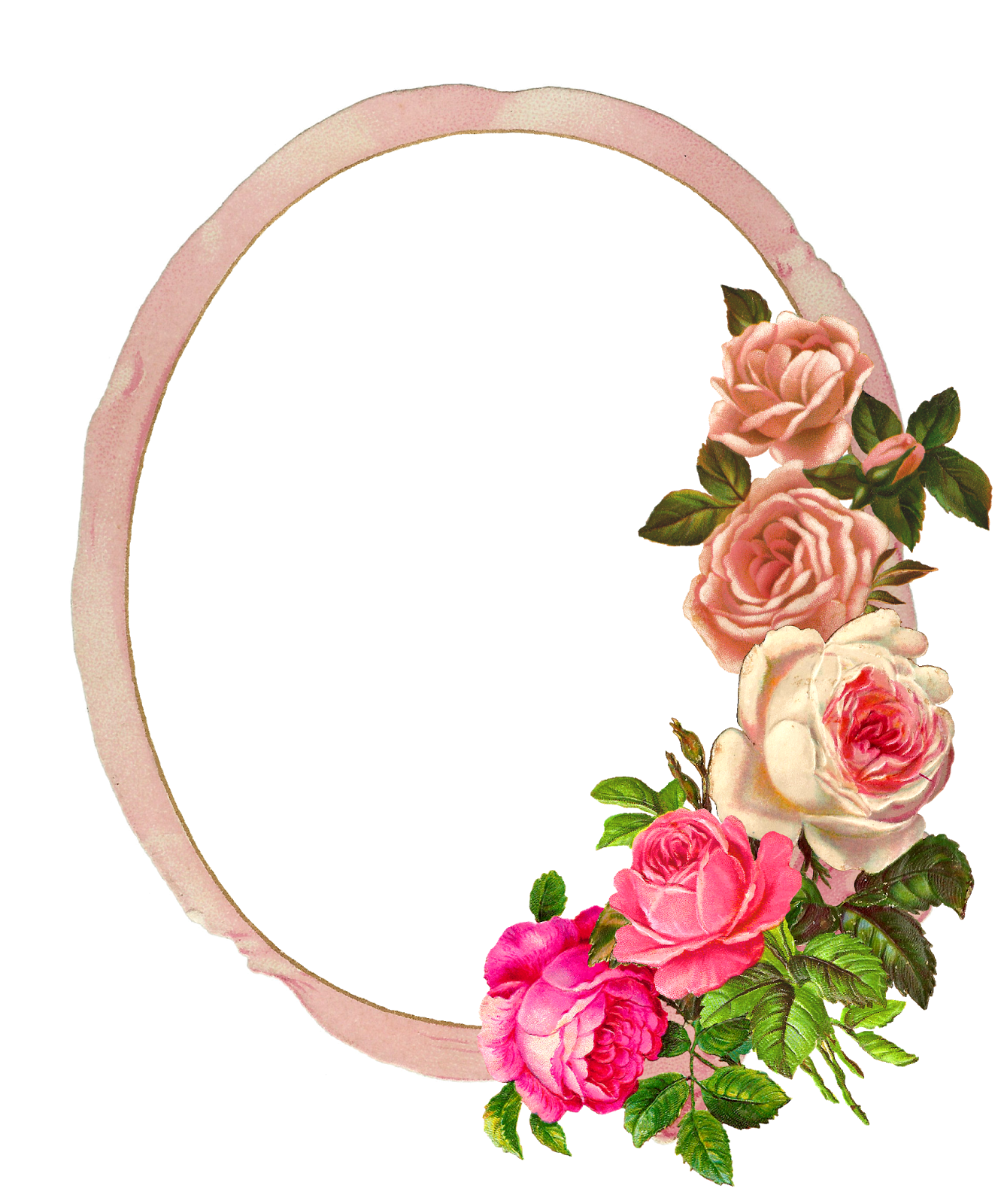 Rose frame png. The graphics monarch free