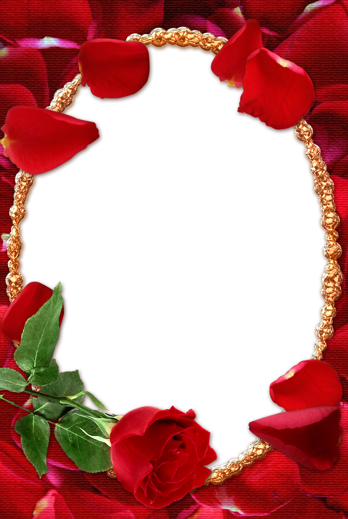 Transparent gallery yopriceville high. Rose frame png