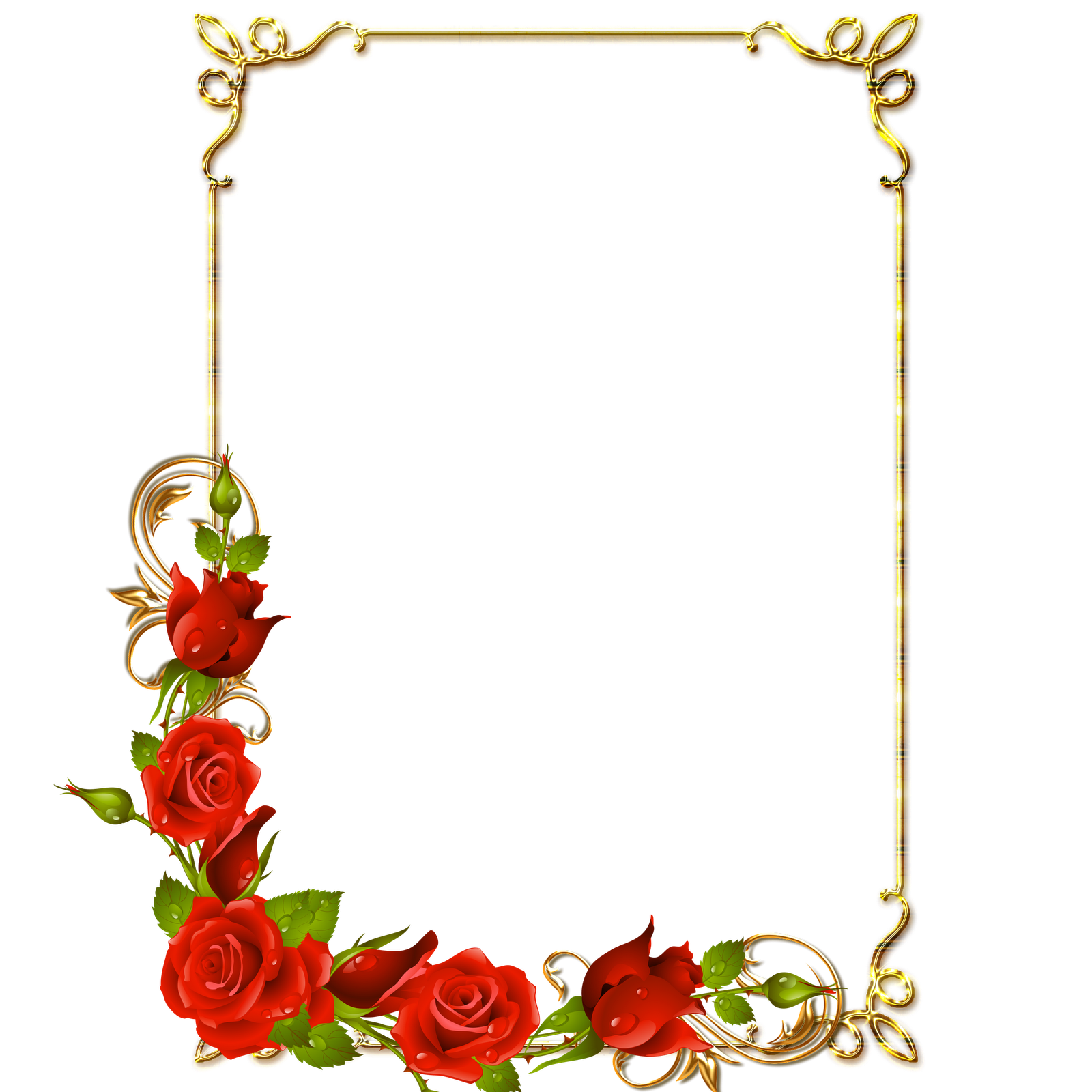 Photo free icons and. Rose frame png