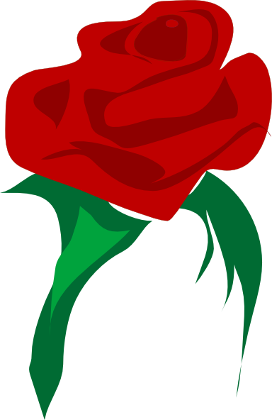 Rose vector png. Red flower clip art