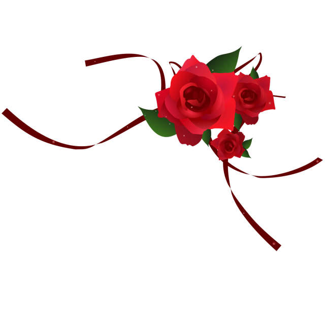 Rose vector png. Red border image and