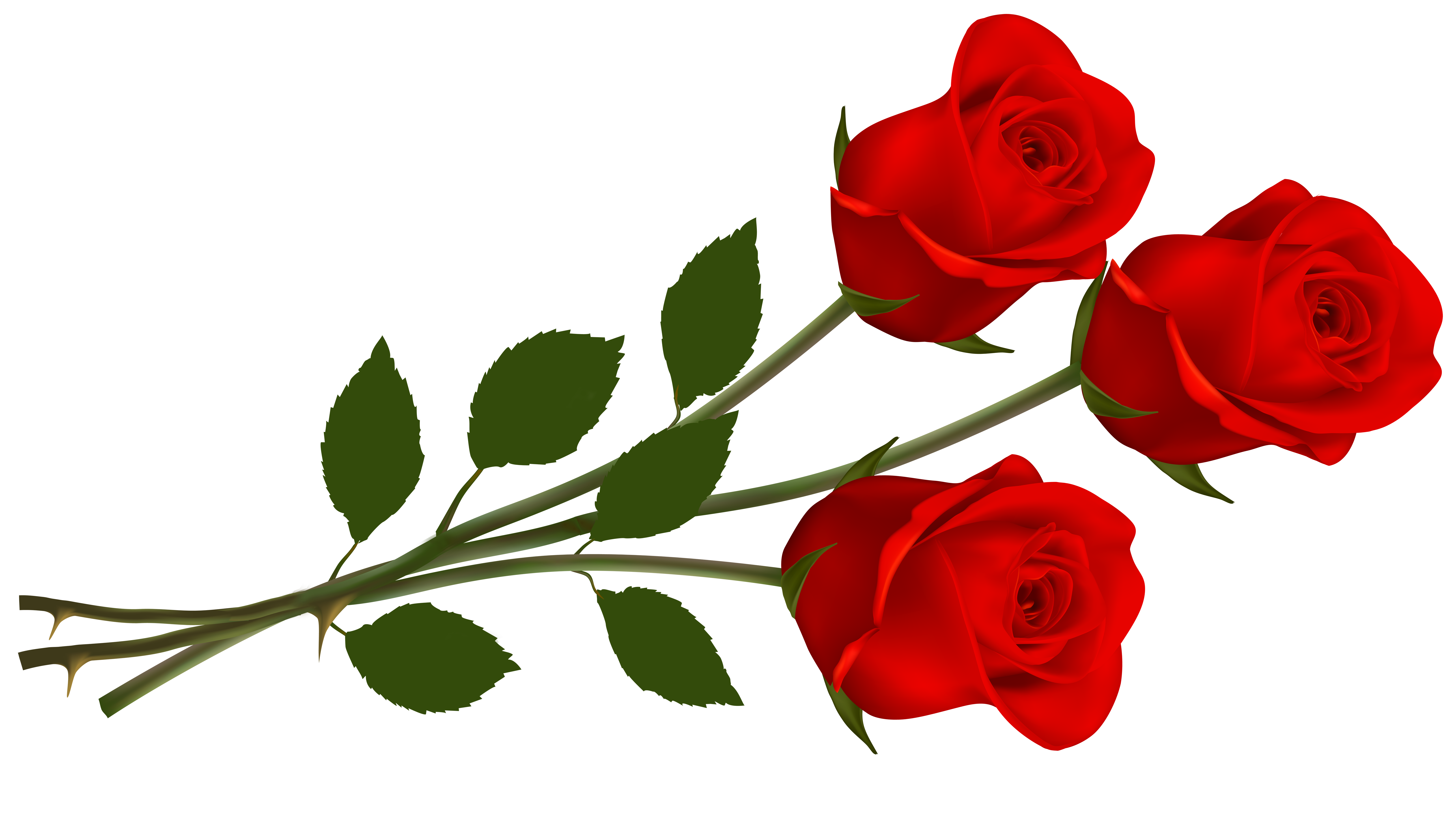 Clipart roses. Large red png gallery