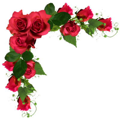 Beautiful decor with by. Roses png images