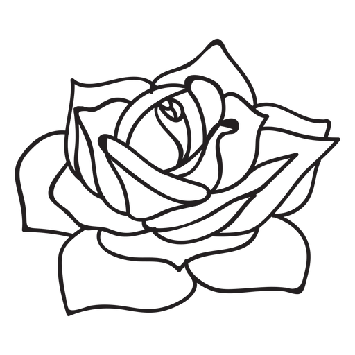 Roses vector png. Flowering rose stroke icon