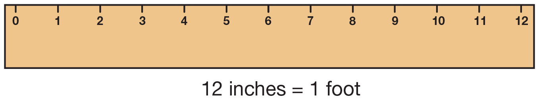 Ruler Clipart 12 Inch Ruler 12 Inch Transparent Free For Download On Webstockreview 2021