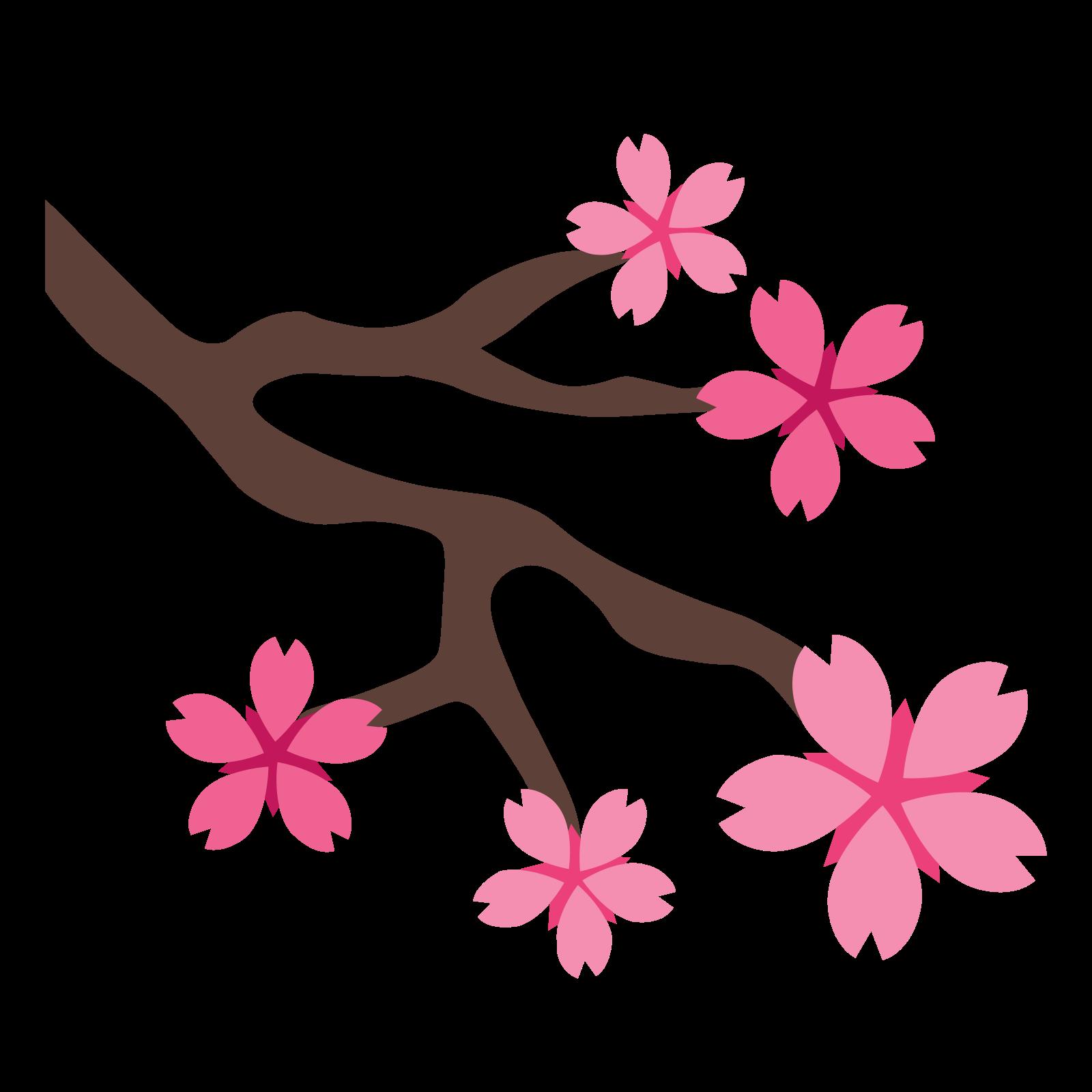 Sakura flower png. Ic ne t l