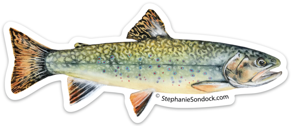 Products stephanie sondock brook. Salmon clipart cutthroat trout