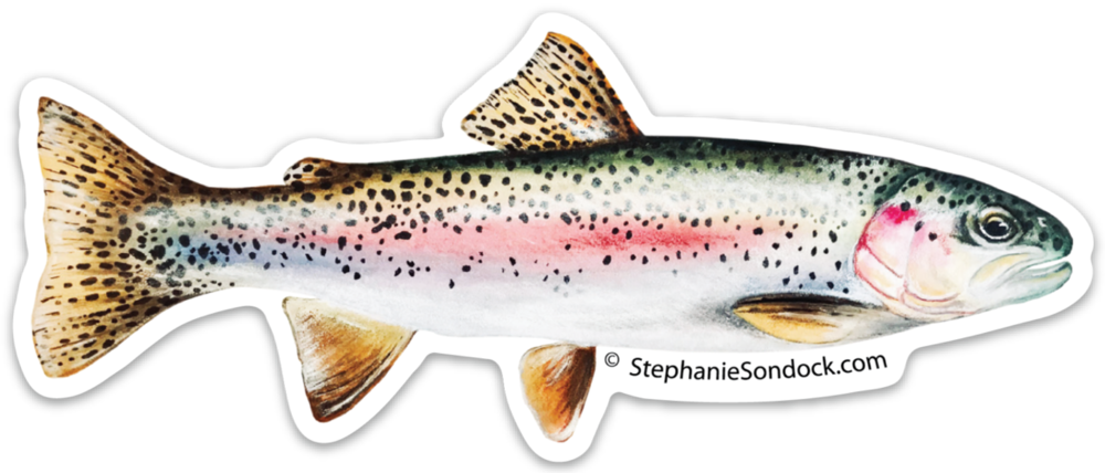 Products stephanie sondock rainbow. Salmon clipart cutthroat trout